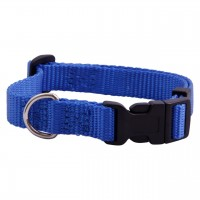 AC  Royal Nylon Adjustable Dog  Collar