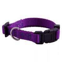 AC Purple Nylon Adjustable Collar