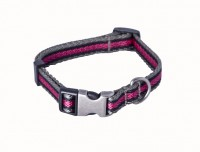 nylon dog collar