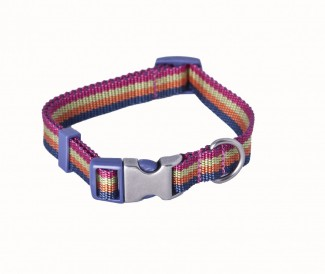 striped nylon dog collar