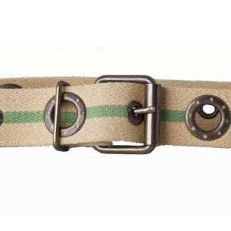 Yellow and green cotton webbing belt