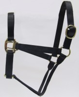 HH Black Nylon Halter with Shiny Brass Plated Hardware