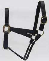 HH Black Nylon Halter with Shiny Brass Plated Hardware