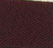 970 Burgundy Polyester Woven Elastic
