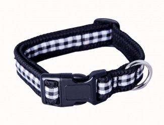 gingham webbing dog collar