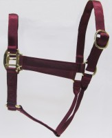 HH Burgundy Nylon Halter with Shiny Brass Plated Hardware