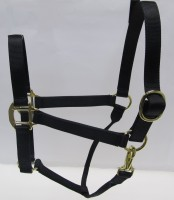 Black Nylon Halter with Shiny Brass Plated Hardware