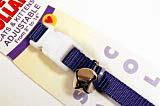 Purple Cat Collar