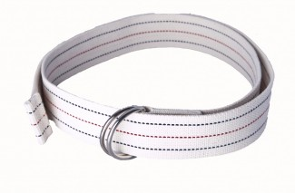 moving strap with d rings
