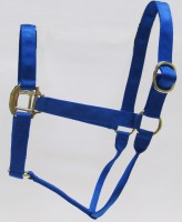 HH Royal Nylon Halter with Shiny Brass Plated Hardware