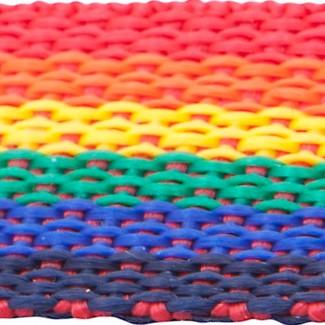 Rainbow polypropylene webbing